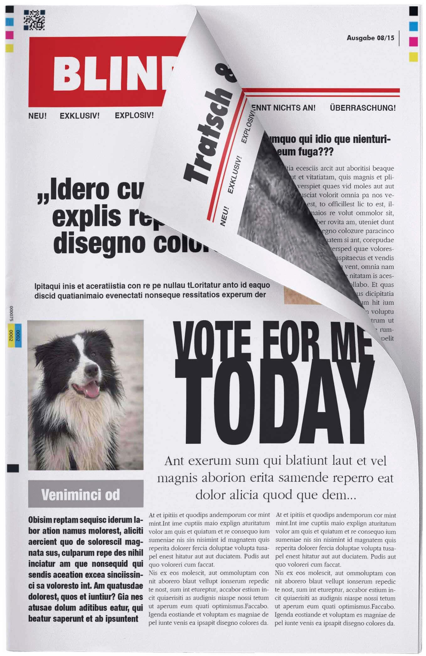 Fake Zeitung im Look einer bunten Boulevardzeitung erstellen